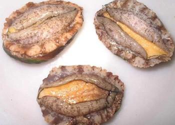 鲍鱼有什么营养价值?吃鲍鱼适宜的人群有哪些?