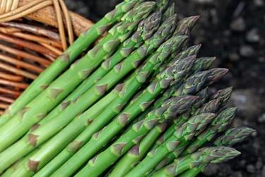 蘆筍有哪些營養價值?可以做成哪些菜譜?