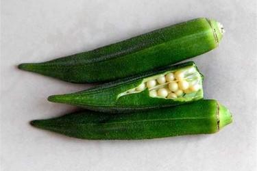 黃秋葵的營養價值(特種蔬菜農產)