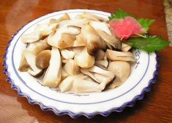 視頻:秦嶺腳下小菌菇,撐起扶貧大產業(渭南市華州區)