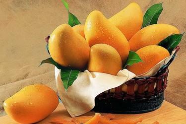 水果營銷案例:用微信一個月賣30萬元特級芒果
