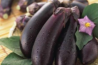 茄子的10种美食加工做法