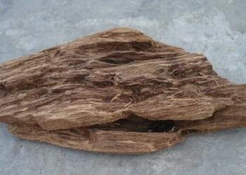 (農科知識)沉香與沉香木的區分辨別
