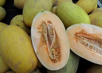 哈密瓜怎么吃?哈密瓜的9種食譜做法
