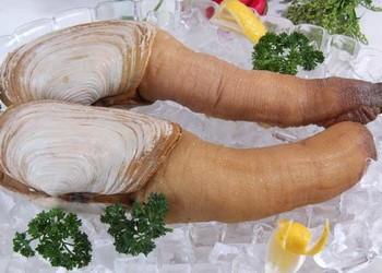 象拔蚌有何營養價值?象拔蚌的食用方法是怎樣的?