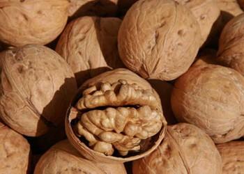 果品:核桃皮的食用功效與作用(膳食知識)