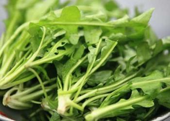 菱角菜的營養作用(蔬菜膳食)