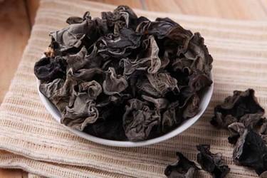 黑木耳的菌絲培養方法及其注意要點