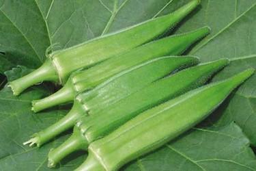 秋葵的食用功效與作用及食用方法(蔬菜膳食)