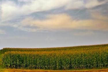 漳州市:2018年補充耕地和高標準農田建設任務的通知