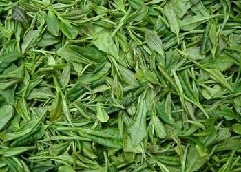 茶品知識:龍井茶的來歷和傳說