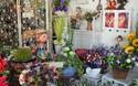 創業項目:開花店賺錢嗎?怎樣創收賺錢?