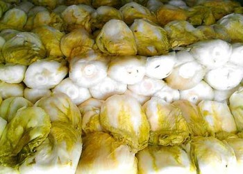 蔬菜加工:芥菜的腌制方法介紹