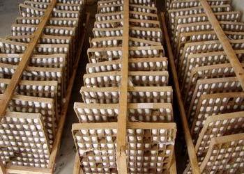 養蠶簇具:養蠶用方格簇使用技術