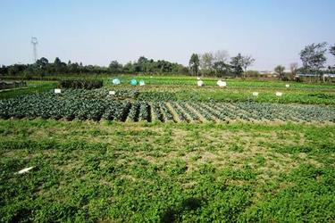 开办一个生态循环养殖农场要什么手续?需要哪些申报材料和流程?