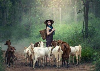 小农户或合作社有哪些新政策?能领取农业补贴吗?怎么拿到补贴?