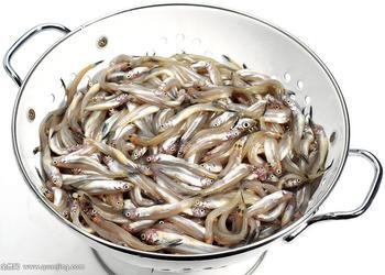 水產品:銀魚的批量加工工藝技術