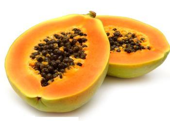 木瓜(貼梗海棠)的經濟價值與栽種技術