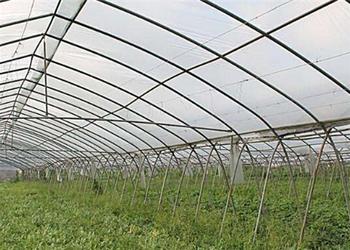 2018年长沙农政:重点补助200亩以上蔬菜标准化大棚建设