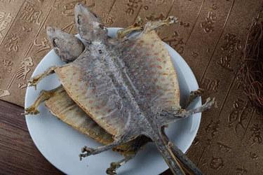 蛤蚧加工技术及质量标准介绍