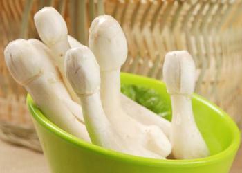 大棚栽培鸡腿菇中存在的关键技术问题