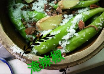 圖文攻略:腌制辣椒的手工自制做法