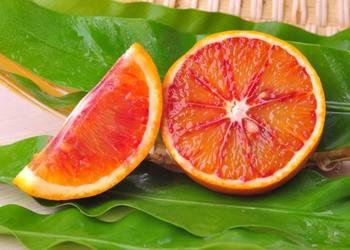 果樹良種:塔羅科血橙栽種技術[視頻]